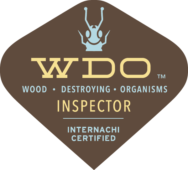 WDI Termite Inspection Northern Colorado