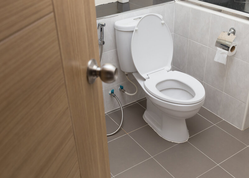 Toilet Inspection Greeley
